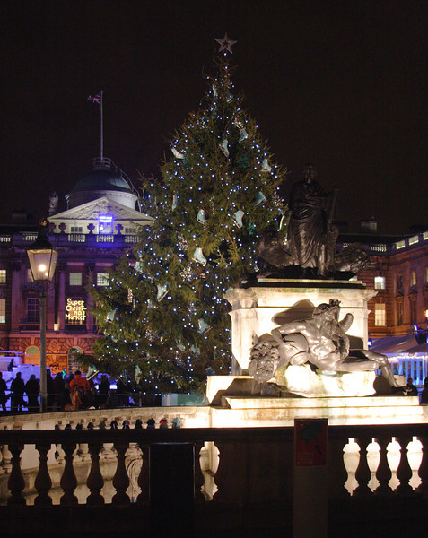 Christmas Tree at Somerset House London 2008