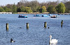 Boating on The Serpentine Hyde Park London