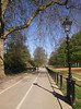 Footpath and cycle lane at Hyde Park London