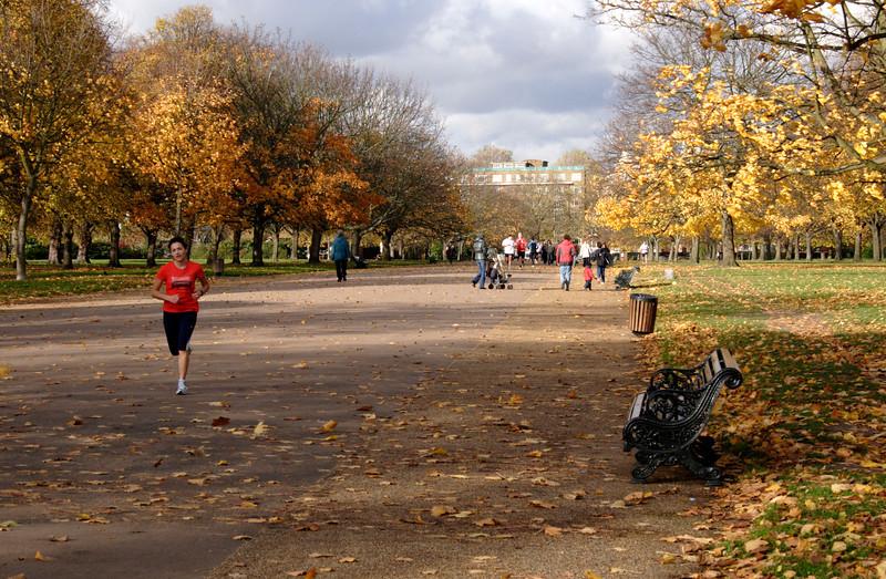 Jogger at Kensington Gardens London