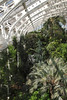 Interior of Temperate House Kew Gardens London