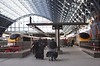 Eurostar locomotives at St Pancras International railway Station London