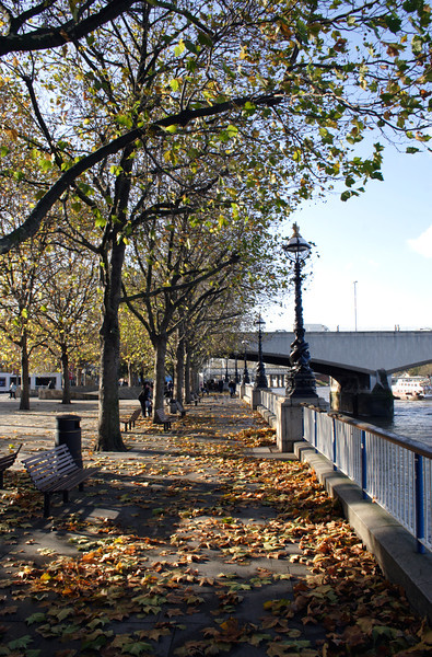 South Bank Promenade Autumn London