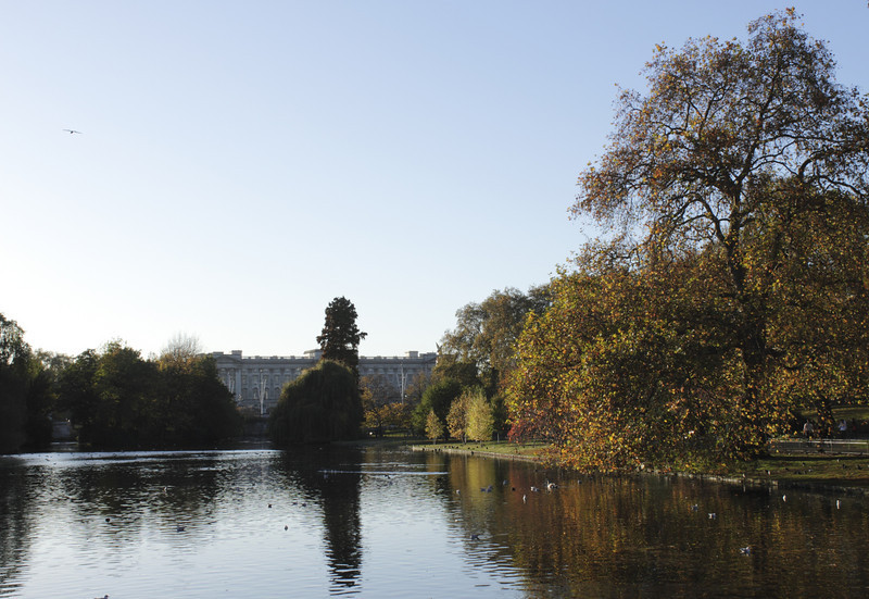 Lake at St James's Park London towards Buckingham Palace Autumn 2010