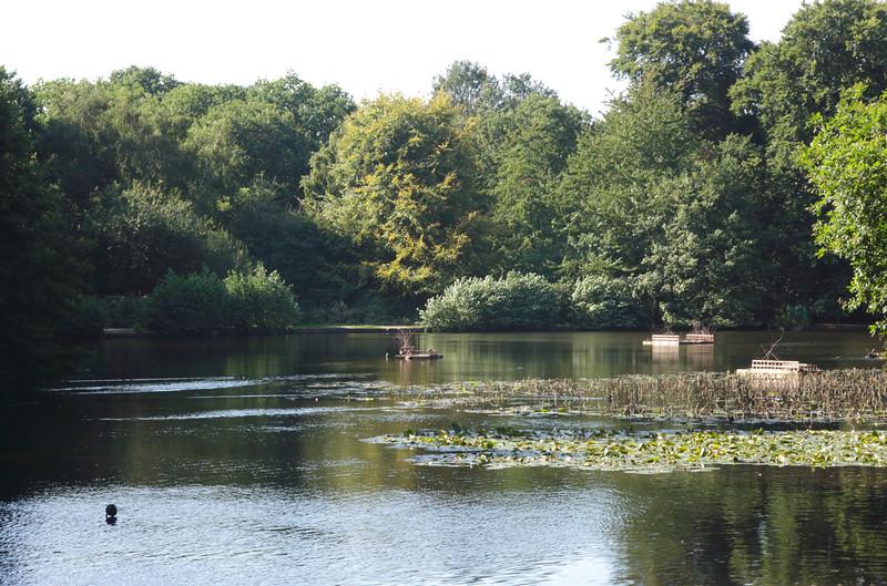 Queens Mere Pond Wimbledon Common London