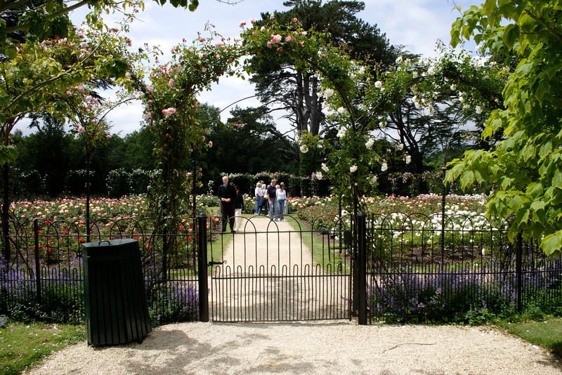 Rose Garden Blenheim Palace Oxfordshire