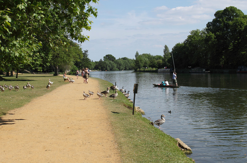 River Thames Oxford June 2010