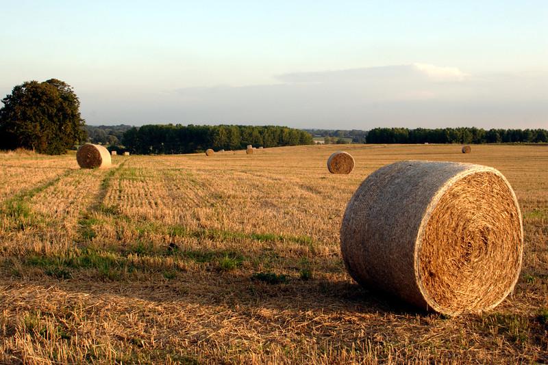 Hay bales Oxfordshire England