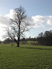 Countryside at Shiplake Oxfordshire