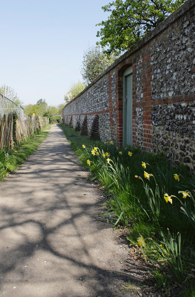 Stone wall and daffodils at Shiplake Oxfordshire spring 2010