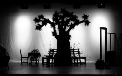 The village tree
