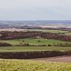 Bedwyn Fields
