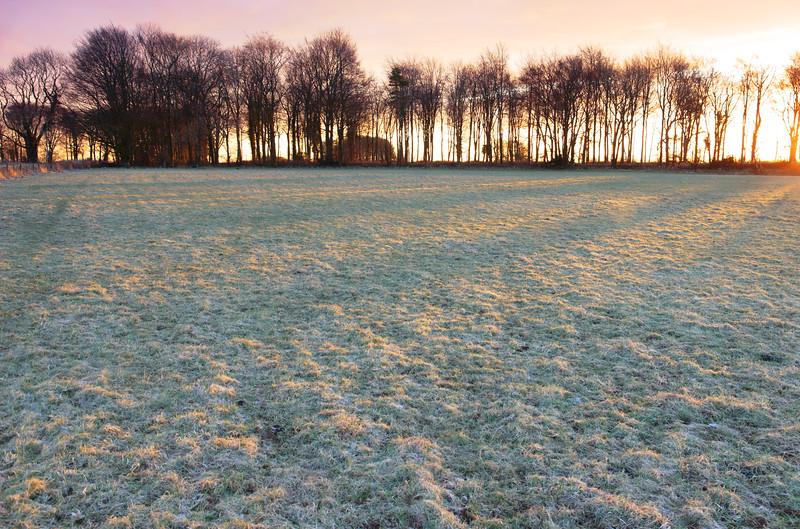 Warm light on a frosty morning