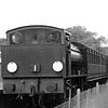 Austeritry Class WD192 Waggoner