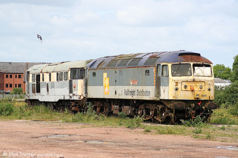 Out to graze... With their Railfreight grey liveries bleached by the sun, 47365 (formerly 'Diamond Jubilee') keeps company with 31206 in store at Cotswold Rail's Gloucester Horton Road yard on 28th May 2006.