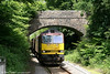 60025 'Caledonian Paper' at Sarn with the diverted 6M41, 1100 Margam - Round Oak on 20th May 2007. This leafy scene is not as idyllic as it would appear; most of the foliage is Japanese knotweed!