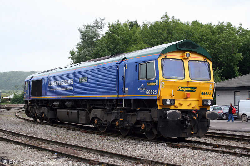 A second shot of Freightliner's Bardon Aggregates liveried 66623 'Bill Bolsover' at Merehead on 21st June 2008.