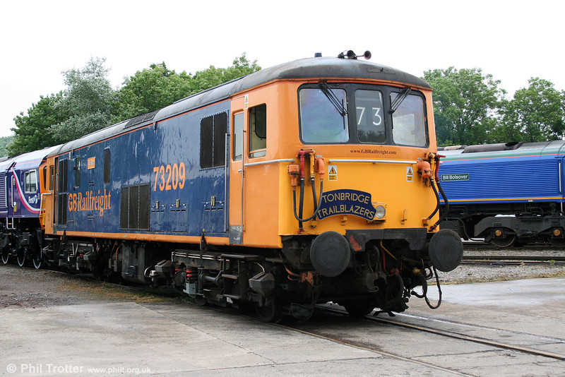 GBRf 73209 'Alison' at Merehead on 21st June 2008.