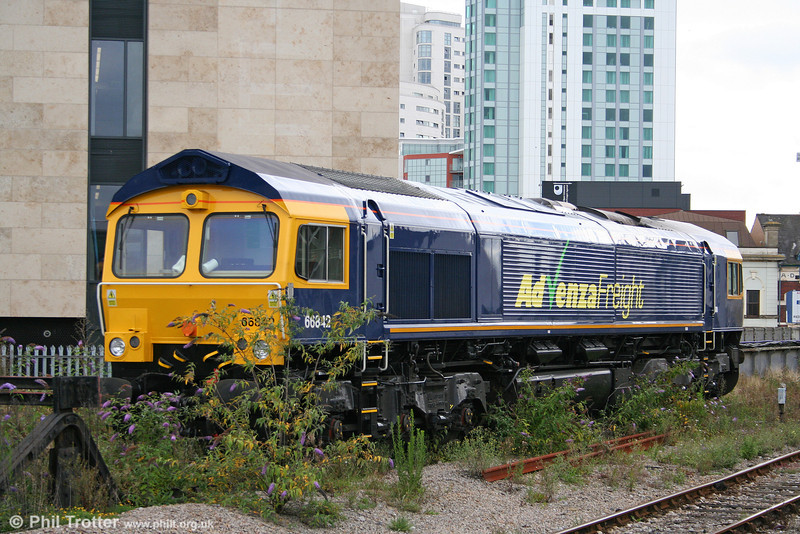 Advenza 66842 (ex DRS 66407) is seen in its customary stabling position, hiding behind a Buddleia bush at Cardiff Central on 3rd August 2009.