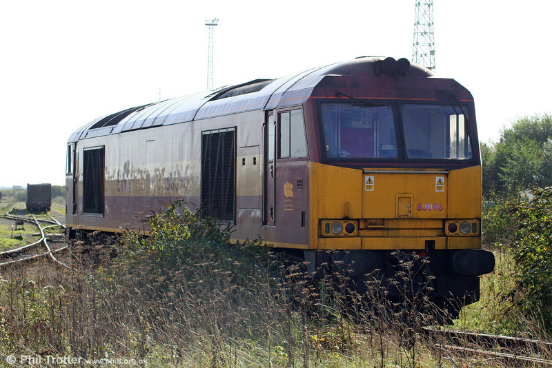 60096 - at one time named 'Ben Macdui' - hides behind a bush at Margam Knuckle Yard on 10th October 2009.