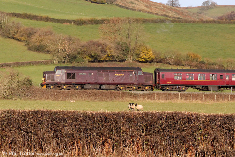 37516 'Loch Laidon' brings up the rear of the Railway Touring Company's 1Z87, 0730 Bristol Temple Meads to Crewe, 'The Christmas Cheshireman' at Llanfihangel on 30th November 2013.