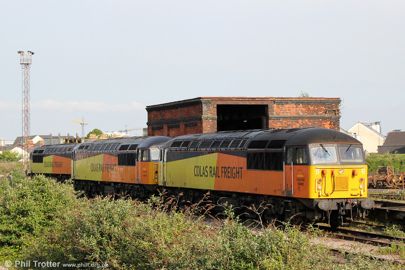 Almost like the old days... Three class 56s stabled at Cardiff Canton on 3rd May 2014. 56302 is nearest the camera, behind which is 56078. 56113 is in the background.