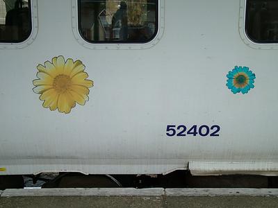 156402_Ipswich_010806f