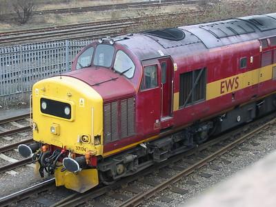 EWS's 37174 at Washwood Heath