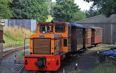 W&L No.17 (Diema 4270/1979, Ex San-hua Sugar Works Railway, Taiwan, no.175) stabled at Llanfair Caereinion shed  - 31/08/13.
