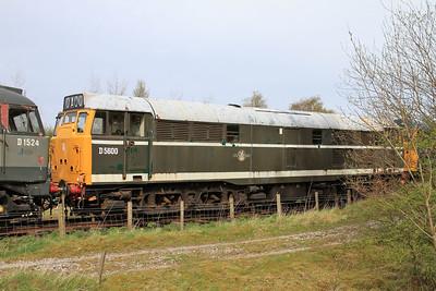 D5600 (31425), Bolton Abbey - 04/05/15.