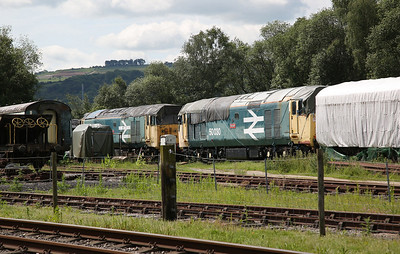 50029 & 50030 in the sidings at Rowsley yard - 03/06/17.