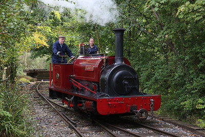 West Lancs Light Railway, 50th Anniversary Steam Gala, 24th September 2017