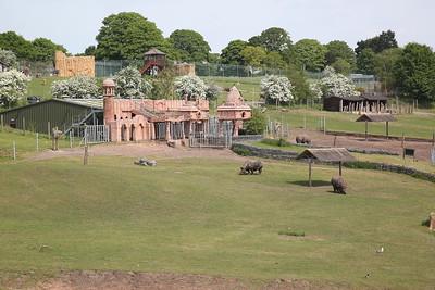 Passing the safari park near Kidderminster, 3 Rhinos can be seen - 18/05/18