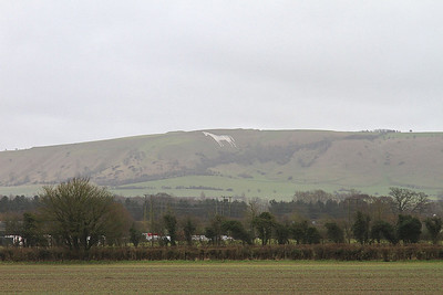 The Westbury White Horse glimpsed as we meander past - 20/02/16.