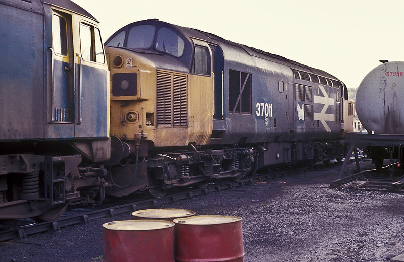 Somewhat distant from its home depot of Eastfield 37011 sits in the depot yard at Buxton on 26 May 1986