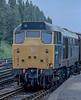 31460 York 11 June 1985