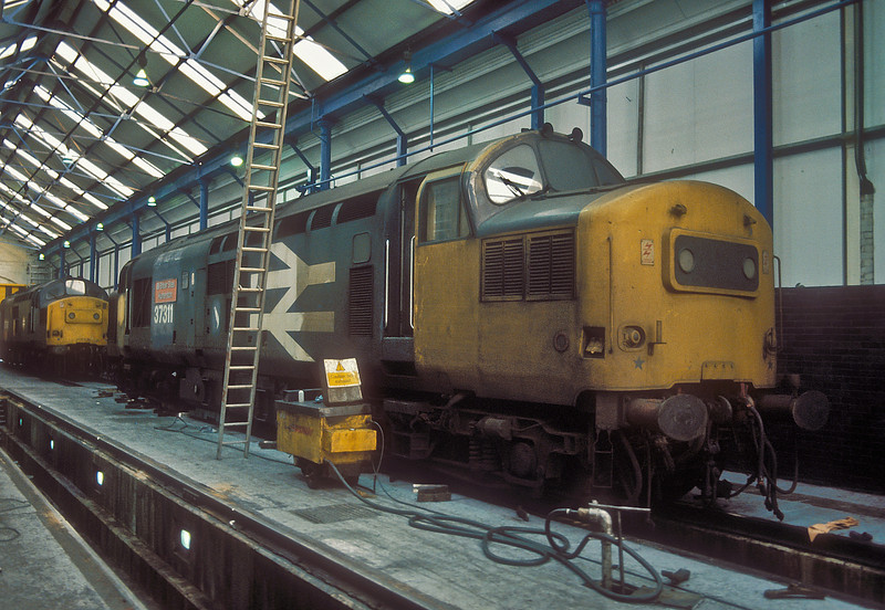 In 1986 a batch of Class 37 locos at Motherwell were renumbered, named and dedicated to work for the nearby British Steel plants. On 15 November 1986 37311 (formerly 37156) 'British Steel Hunterston' appears to undergoing a fairly half-hearted clean inside the depot buildings