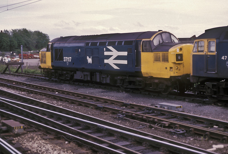 37117 is stabled in the holding sidings at Carlisle on 25 May 1986