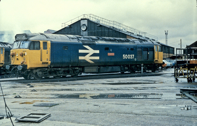 50037 'Glorious' is at the rear of Old Oak Common depot on 14 November 1982 in the large logo livery