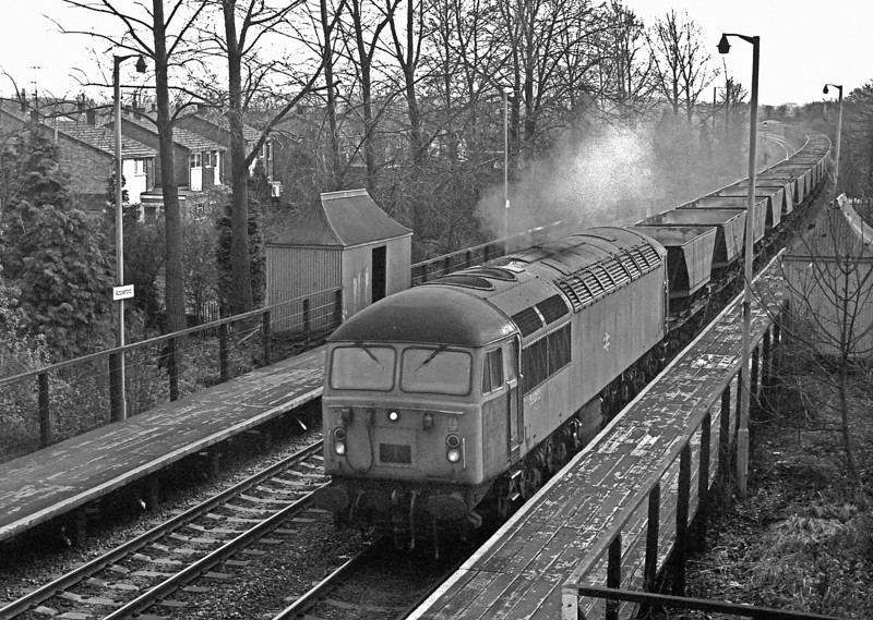 56052 heads a train of MGR empties from Didcot seen passing Appleford on 10 December 1982