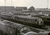 46037 Cardiff Canton 22 August 1983