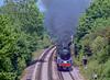 73096 Petersfield 2003