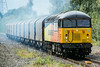 56096  Water Orton 12 August 2014