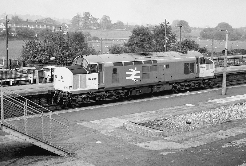 37255 Severn Tunnel Junction May 1988