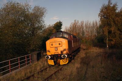 37 410 at Runcorn on 2nd November 2007 (3)