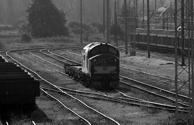 37 411 at Warrington Arpley on 2nd November 2007 (1)