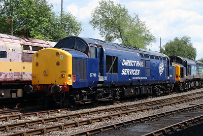 37 703 at Barrow Hill on 1st June 2014 (2)