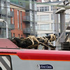 390 128 Pantograph at Manchester Oxford Road on 23rd January 2015 (6)