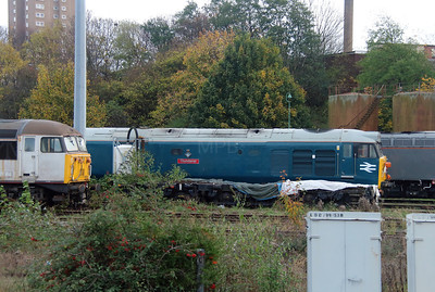 1) 50 008 at Leicester Depot on 11th November 2015