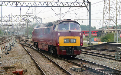 D1015 at Crewe on 5th September 2014  (15)